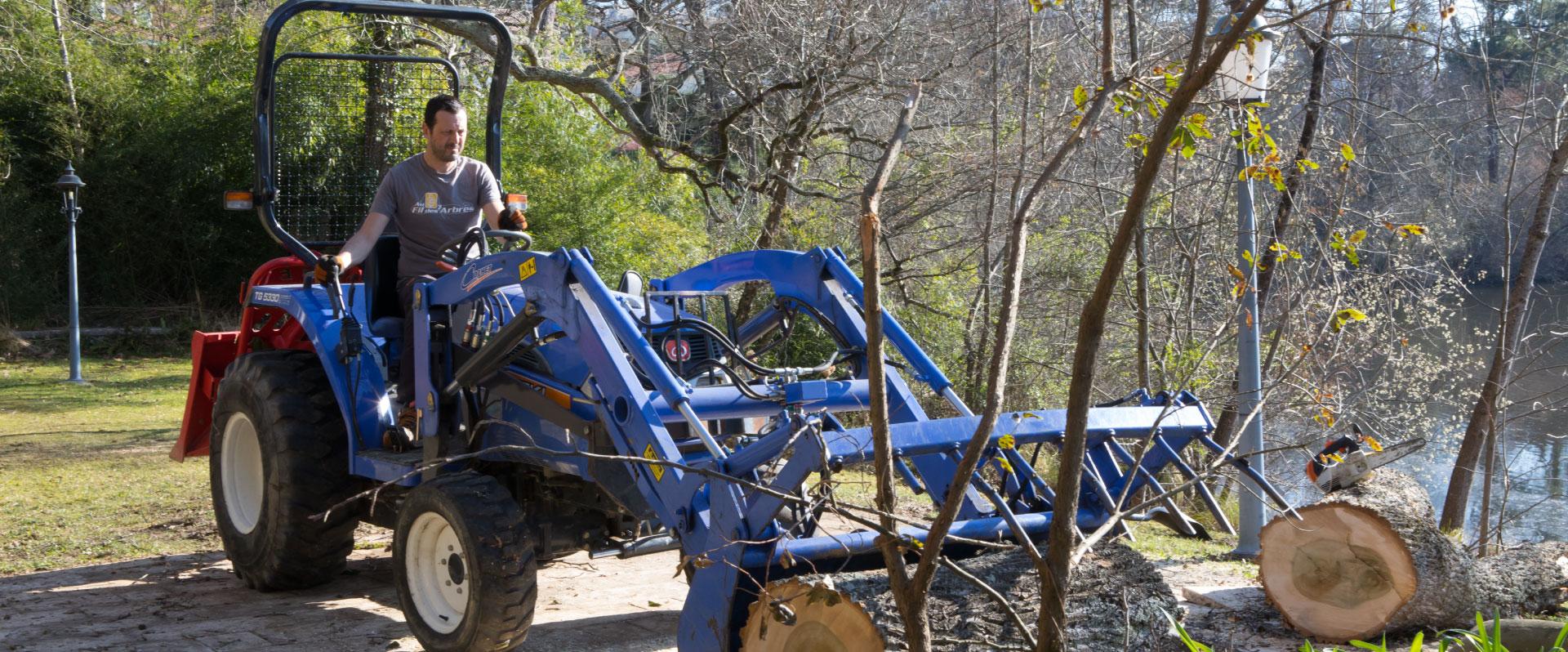 Au fil des arbres, élagage des arbres 66