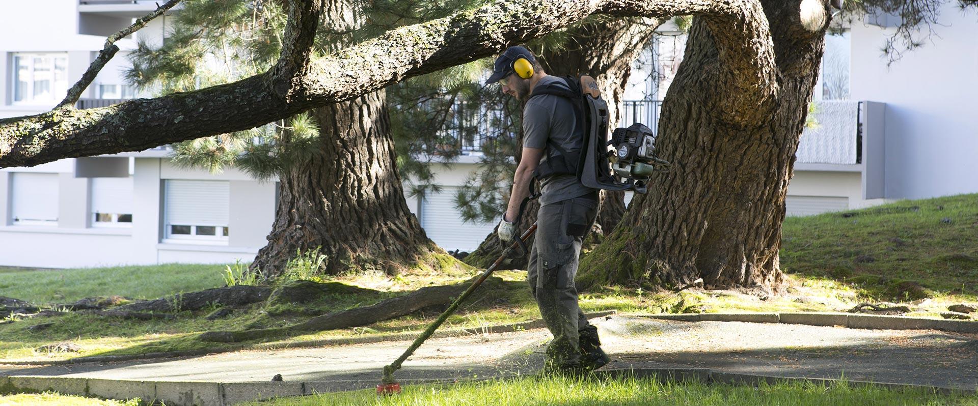 Au fil des arbres, entretien parcs et jardins 18