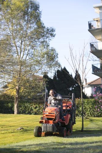 Au fil des arbres, entretien parcs et jardins 36