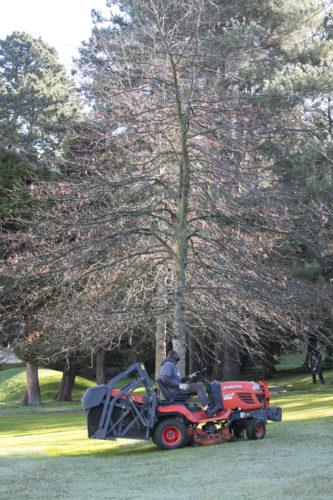 Au fil des arbres, entretien parcs et jardins 35