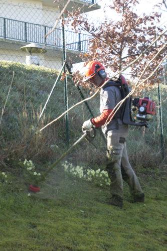 Au fil des arbres, entretien parcs et jardins 32