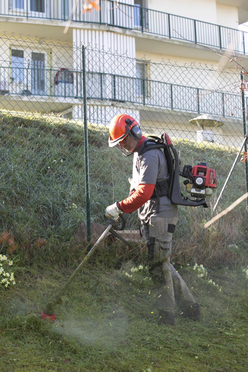 Au Fil des arbres propose aussi l'entretien des parcs et jardins