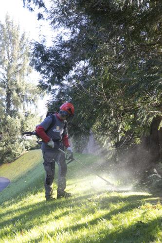 Au fil des arbres, entretien parcs et jardins 46