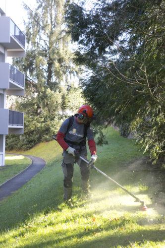 Au fil des arbres, entretien parcs et jardins 45