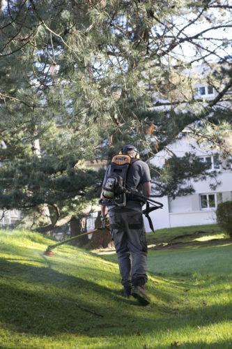 Au fil des arbres, entretien parcs et jardins 43