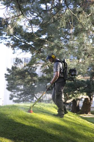 Au fil des arbres, entretien parcs et jardins 42