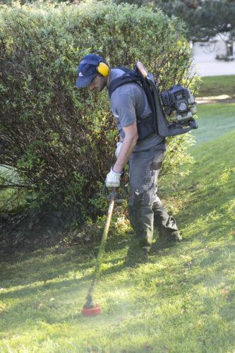 Au fil des arbres, entretien parcs et jardins 41