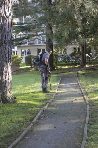 Au fil des arbres, entretien parcs et jardins 40