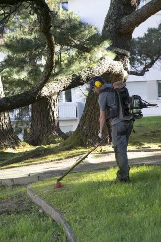 Au fil des arbres, entretien parcs et jardins 39
