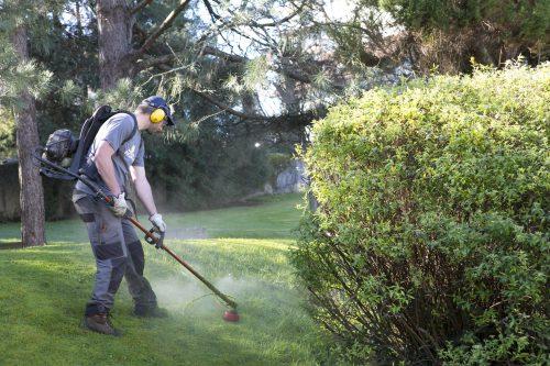 Au fil des arbres, entretien de parcs et jardins au pays basque 1